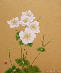 「秋明菊」