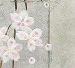 日本画「平安春秋-春-」が動画になりました